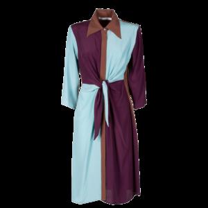 Chemisier dress in silk crepe de chine - still